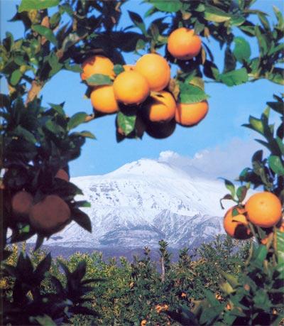paesaggio-etna-sicilia-aran